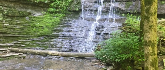 Waterfall along The Trace