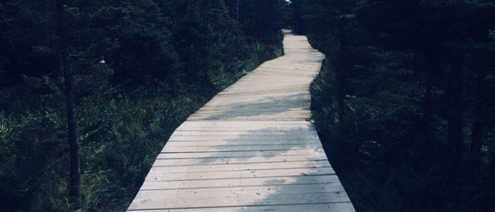 Cape Breton Highlands - Skyline Trail