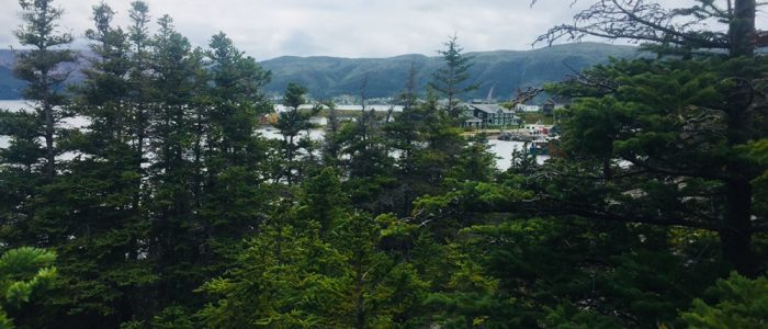 Norris Point — Burnt Hill