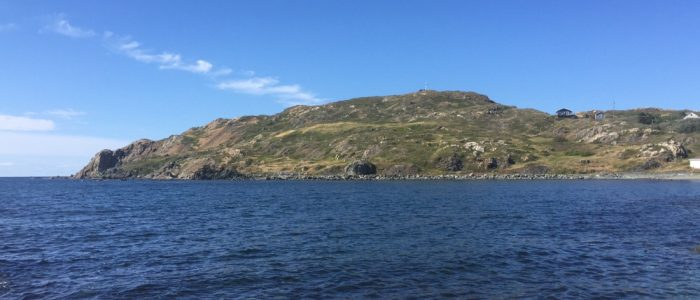 Kittiwake Coast - Twillingate