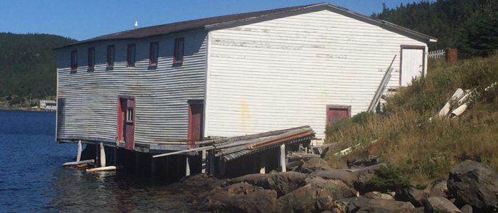 Kittiwake Coast - Moreton's Harbor