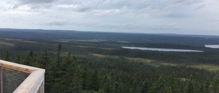 Terra Nova — Ochre Hill