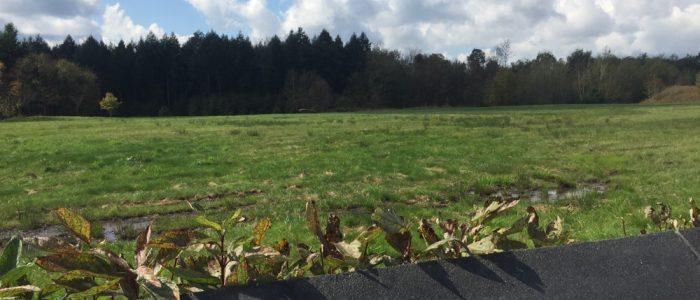 Flight 93 Memorial - Debris Field