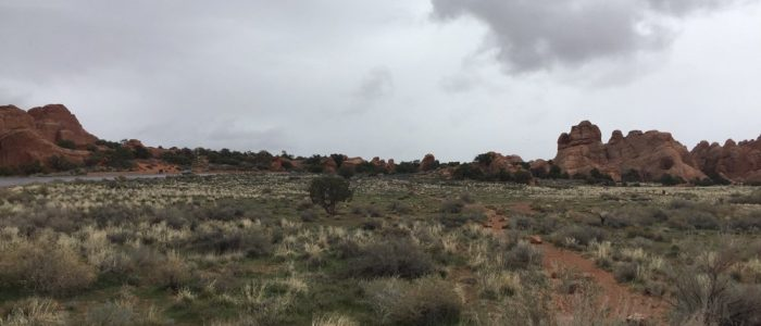 Canyonlands National Park – Island in the Sky District