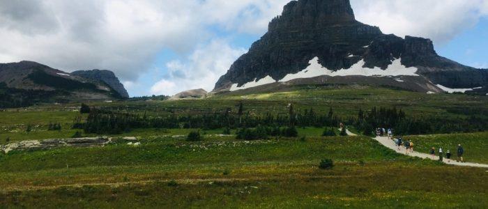 Glacier National Park Logan Pass Area