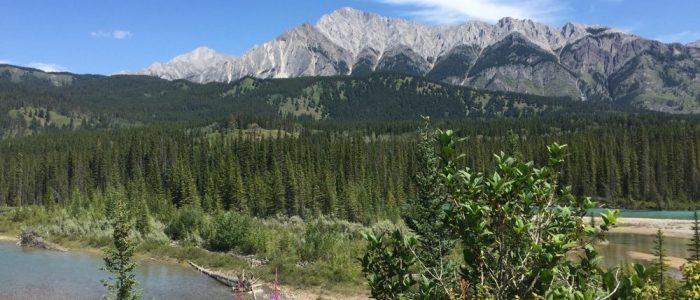 Banff National Park (7391)