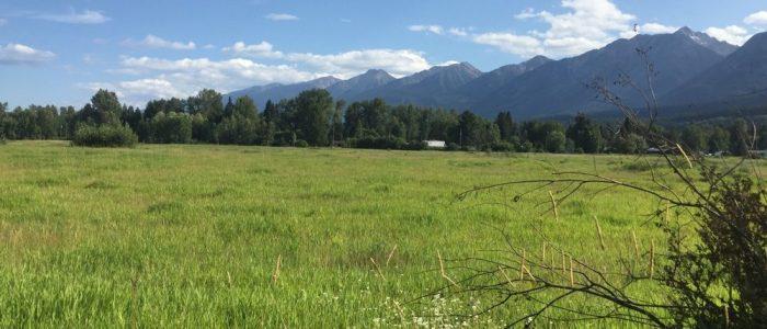 Golden Eco Adventure Ranch (7397)