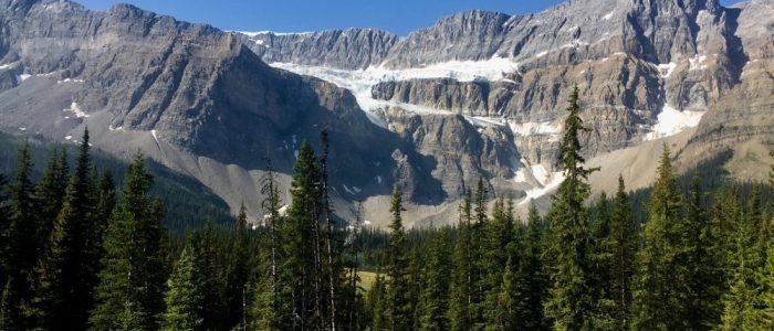 Jasper NP Icefield Parkway (7427)