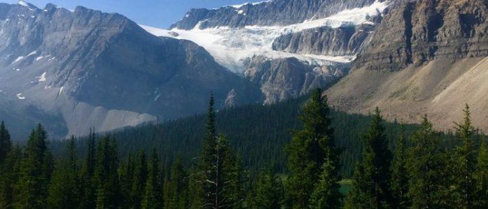 Jasper NP Icefield Parkway (7428)