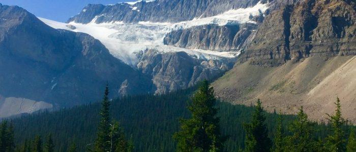 Jasper NP Icefield Parkway (7429)