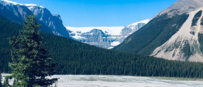 Jasper NP Icefield Parkway (7456)