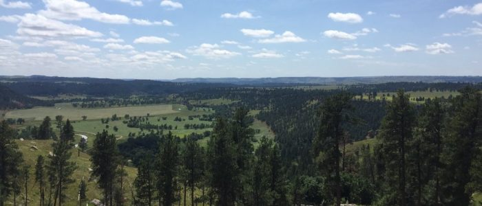 Devils Tower Area (7520)