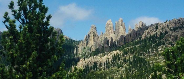 Mount Rushmore (7541)