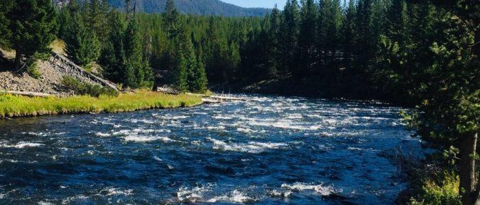 Firehole River (7565)