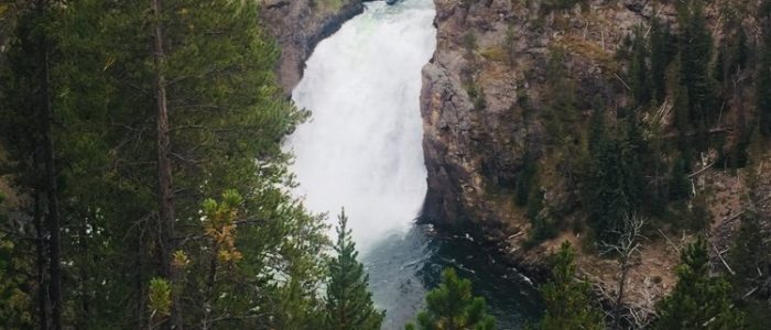 Grand Canyon of the Yellowstone Upper Falls (7691)