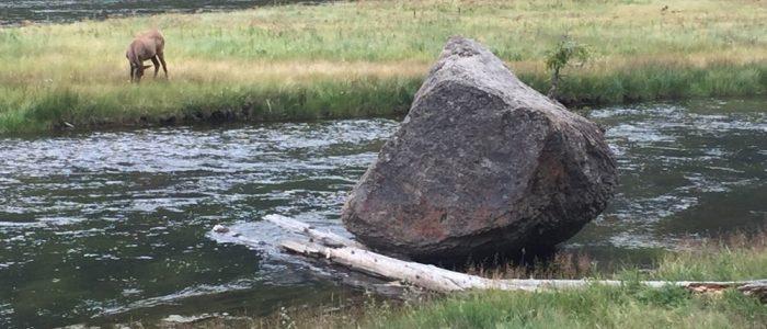 Madison River (7718)