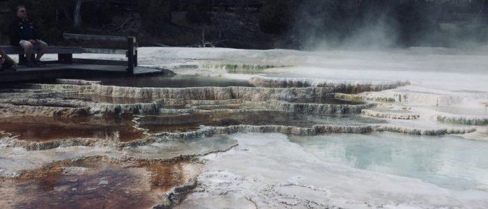 Mammoth Hot Springs (7732)
