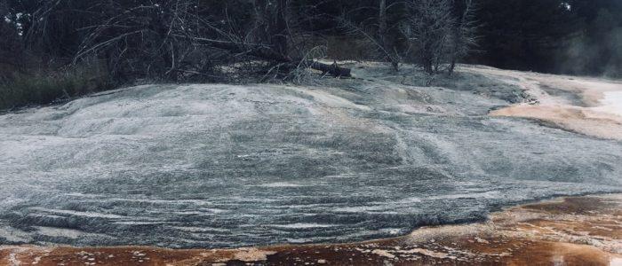 Mammoth Hot Springs (7739)