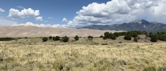 Great Sand Dunes National Park (7851)